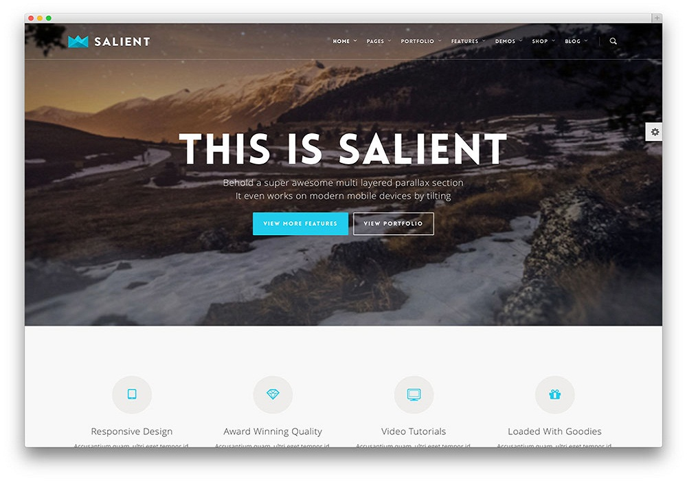 salient-flat-design-wordpress-theme.jpg
